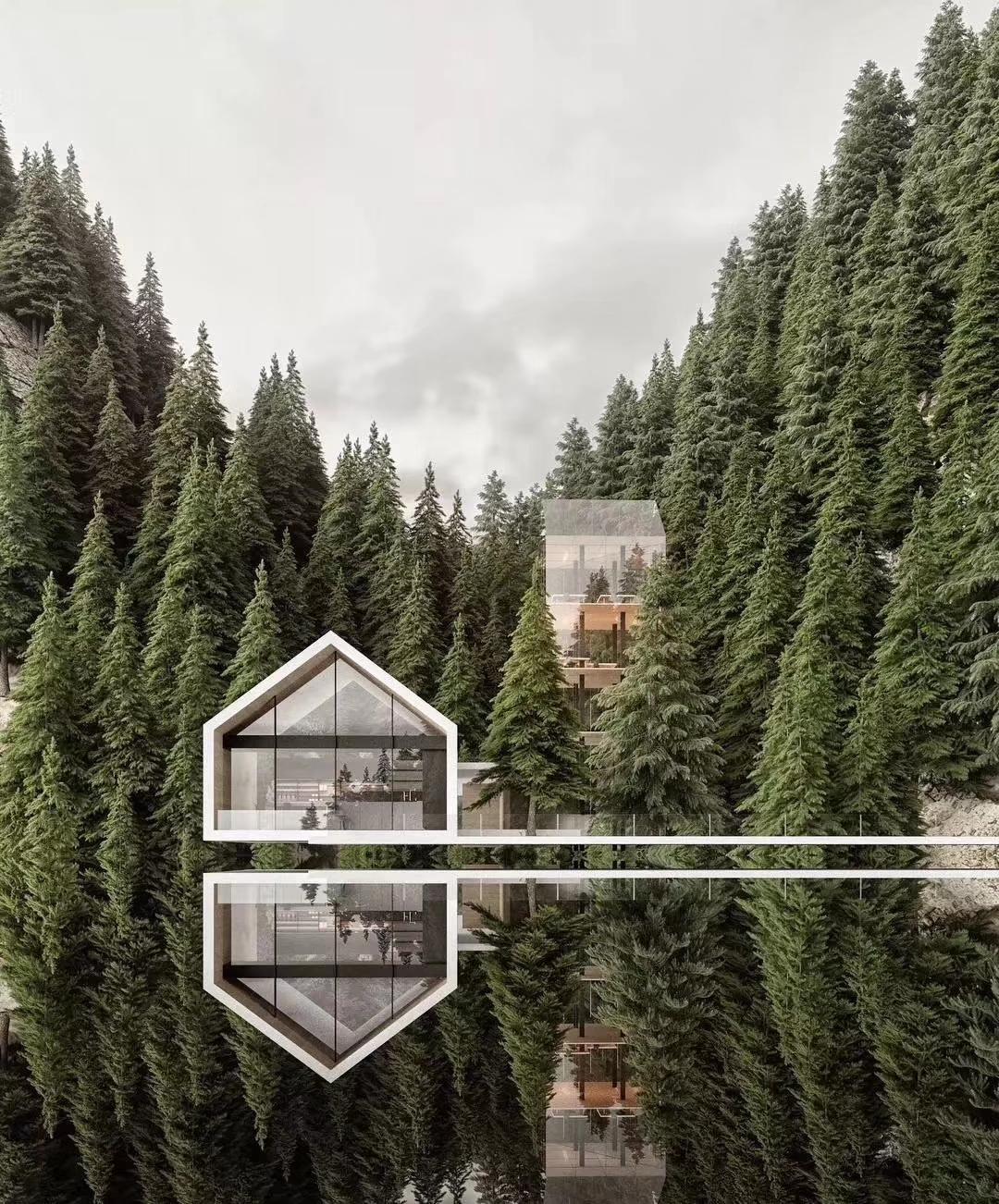 新西蘭森林高端民宿酒店